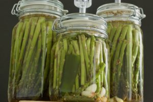 Three airlock jars of fermented asparagus.