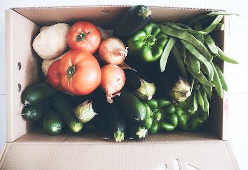 CSA FOOD box